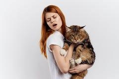 白色被隔绝的背景的美丽的少妇拿着一只猫 免版税图库摄影