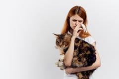 白色被隔绝的背景的年轻美丽的妇女拿着一只猫,过敏,悲伤,情感,宠物 免版税库存图片
