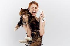 白色被隔绝的背景的年轻美丽的妇女拿着一只猫,过敏 库存图片