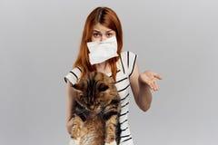 白色被隔绝的背景的年轻美丽的妇女拿着一只猫,过敏 图库摄影