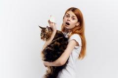 白色被隔绝的背景的年轻美丽的妇女拿着一只猫 免版税库存照片