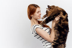 白色被隔绝的背景的年轻美丽的妇女拿着一只猫 免版税库存图片