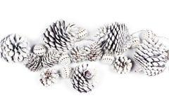 白色装饰杉木锥体和球 库存照片