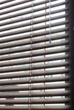 白色软百叶帘的片段与推力绳子和一次人工操作的转动的标尺的在前景的 免版税库存图片