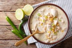 白色辣椒鸡用豆、玉米和香料 水平的上面 库存图片