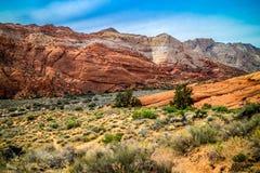 白色那瓦伙族人砂岩在雪峡谷国家公园,犹他 库存照片