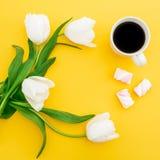 白色郁金香框架开花与杯子咖啡和蛋白软糖在黄色背景 背景植物的圈子盘旋公司使最大的徽标环境美化的冷静花卉花花园庭院中间完善界面固定的空间白色的构成概念 平的位置,顶视图 库存图片