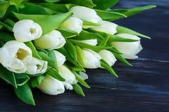 白色郁金香花束  免版税库存照片