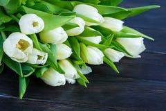 白色郁金香花束  图库摄影