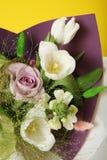 白色郁金香花花束,美好的安排 库存图片