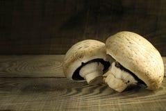 白色采蘑菇在一张木桌上的蘑菇 库存图片
