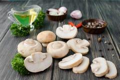 白色采蘑菇蘑菇 库存图片