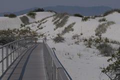 白色铺沙相互沙丘木板走道 免版税图库摄影