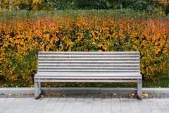 白色长凳在公园 秋天场面静物画 背景五颜六色的叶子 掀动转移作用 免版税库存图片