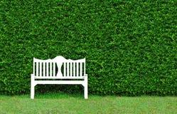 白色长凳在公园 图库摄影