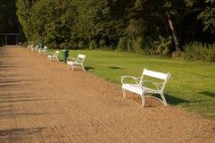白色长凳在公园 免版税库存照片