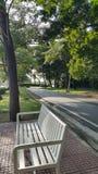 白色长凳在公园 库存照片