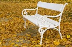 白色长凳在秋天 免版税库存图片