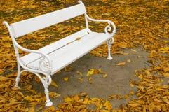白色长凳在秋天 库存照片