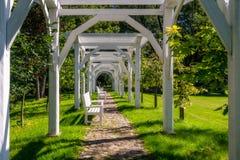 白色长凳在绿色树包围的公园,阳光, s 免版税图库摄影