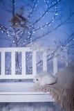 白色长凳用玩具兔子在光亮的树下 免版税库存照片