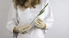 白色长袍举行烧瓶的技术员妇女在手中有麦子耳朵的 股票录像