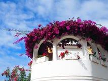 白色阳台在orotava绘了传统房子 库存图片