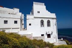 白色阿拉伯房子和黄色花在唐基尔,摩洛哥 库存照片