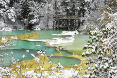白色雪在有蓝绿色池塘的森林里 库存图片