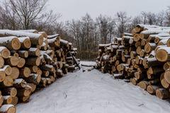 白色雪木头盖的堆 免版税图库摄影