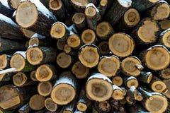 白色雪木头盖的堆 库存图片
