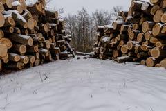 白色雪木头盖的堆 图库摄影