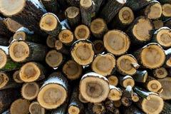 白色雪木头盖的堆 免版税库存照片