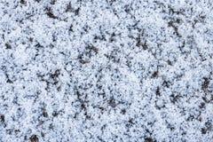 白色雪纹理 免版税库存图片