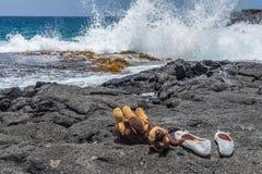 白色鞋子和狗在熔岩岩石 免版税库存照片