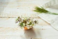 白色领域在蛋壳,餐巾,木表面在软的早晨阳光下,复活节装饰上的绿草枝杈开花 库存图片