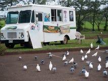 白色食物卡车在毛伊夏威夷 库存图片