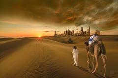 白色骆驼在科威特沙漠 免版税库存照片