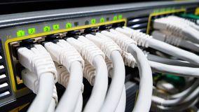 白色高速网络缆绳被连接到在现代大数据中心里面的云彩网络服务系统设备开关 免版税库存图片