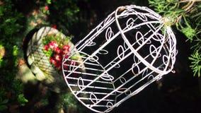 白色鸟笼在葡萄酒设计庭院里 库存图片