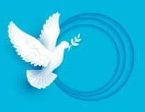 白色鸠举行和平的枝杈标志 免版税库存照片