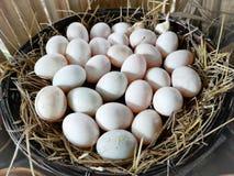白色鸭子鸡蛋在一个木篮子被结合与秸杆 位于传统泰国厨房,软的焦点 库存图片