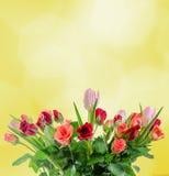白色,橙色,红色和黄色玫瑰开花,花束,植物布置,黄色背景,被隔绝 免版税库存图片