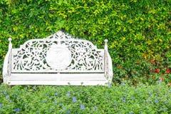 白色经典椅子在庭院里 免版税库存照片