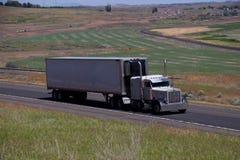 白色经典Peterbilt/白色未玷污的拖车 免版税图库摄影