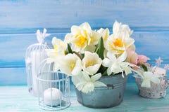 白色黄水仙和郁金香花在桶在绿松石pai 库存照片