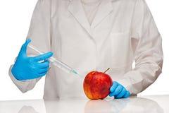 白色医疗褂子和蓝色被消毒的外科手套的女性医生做射入对与塑料注射器的坏看的苹果 库存照片