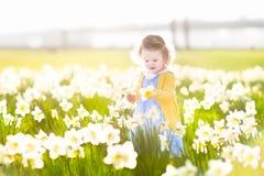 白色黄水仙的滑稽的小孩女孩领域开花 免版税图库摄影