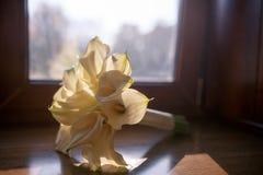 白色水芋属花婚礼花束  图库摄影
