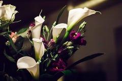 白色水芋百合和紫色南北美洲香草典雅的花束开花 免版税库存照片